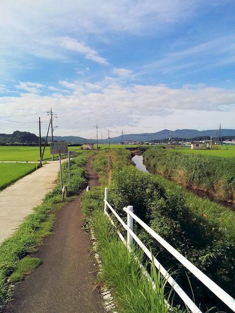 koisegawa-cc.jpg